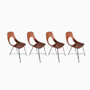 Ariston Esszimmerstühle von Augusto Bozzi für Saporiti Italia, 1950er, 4er Set