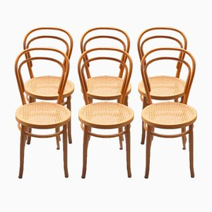 Bent Beech Chairs from Thonet, 1940s, Set of 6