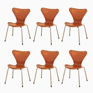 Model 3107 Chairs by Arne Jacobsen for Fritz Hansen, 1955, Set of 6
