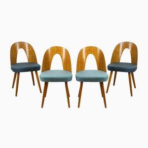 Esszimmerstühle von Antonin Suman für Mier, 1960er, 4er Set