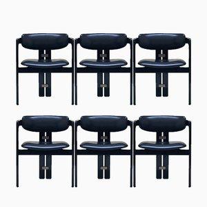 Pamplona Stühle von Augusto Savini für Pozzi, 1968, 6er Set