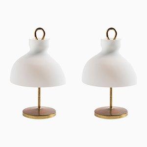 Lampes de Bureau LT3 par Ignazio Gardella pour Azucena, 1950s, Set de 2