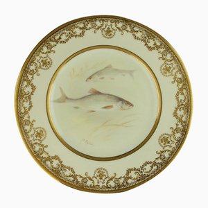 Piatto antico in porcellana con pesci dipinti a mano di C. Holloway per Royal Doulton