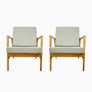 Model 300-139 Armchairs from Swarzędzka, 1960s, Set of 2