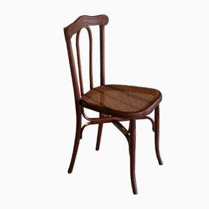 Sedia antico in legno piegato di L. & H. Cambier Frères, inizio XX secolo