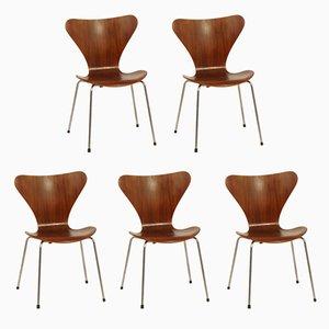 Butterfly Esszimmerstühle aus Teak von Arne Jacobsen für Fritz Hansen, 1950er, 5er Set