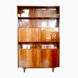 Veneer Cabinet from Cracow Furniture Factory, 1960s