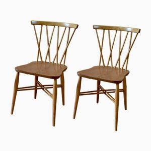 Chiltern Chairs by Lucian Ercolani for Ercol, 1950s, Set of 4