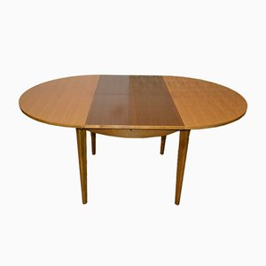 Large Extendable Dining Table, 1960s