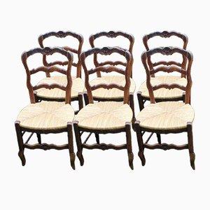 Sedie da pranzo in legno di noce intagliato con sedute in giunchi, set di 6
