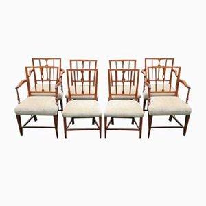 Antike Esszimmerstühle aus Mahagoni, 8er Set