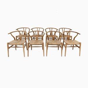 Mid-Century CH24 Wishbone Chairs von Hans J. Wegner, 8er Set