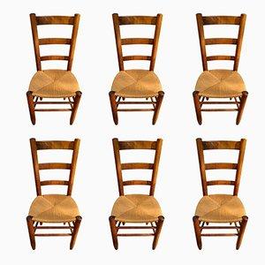 Modell 19 Stühle mit durchbrochenen Rüchlehnen von Charlotte Perriand 1950er, 6er Set