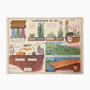 French Double-Sided School Poster L´Amélioration du Sol' & 'Charrues et Labours by J. Anscombre for Imprimerie Georges Lang, 1960