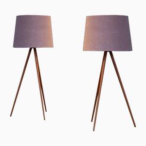 Lámparas de pie o de mesa suecas, años 50. Juego de 2
