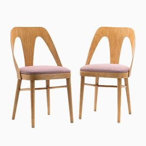 A-1411 FAMEG Chairs from Fabryka Mebli Giętych w Radomsku, 1950s, Set of 2