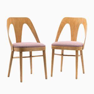 Sedie A-1411 FAMEG Chairs from Fabryka Mebli Giętych w Radomsku, 1950s, Set of 2