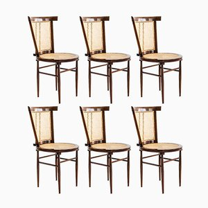 Vintage Cadeira Jacaranda & Cane Chairs by Joaquim Tenreiro for Langenbach & Tenreiro, 1958, Set of 6