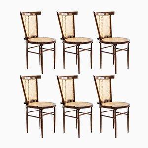 Vintage Cadeira Stühle mit Palisandergestell & Schilfrohrsitz von Joaquim Tenreiro für Langenbach & Tenreiro, 1958, 6er Set