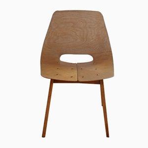 Modell Tonneau Stuhl von Pierre Guariche für Steiner, 1955
