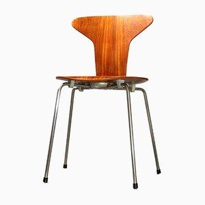 Sedia 3105 Mosquito in teak di Arne Jacobsen per Fritz Hansen, anni '50