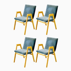 Mid-Century Austrian Stacking Armchairs by Roland Rainer for Emil & Alfred Pollak, 1950s, Set of 4