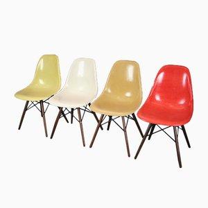 Vintage DSW Stühle aus Nussholz von Charles & Ray Eames für Herman Miller, 4er Set