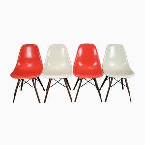 Sillas DSW vintage de nogal de Charles & Ray Eames para Herman Miller. Juego de 4
