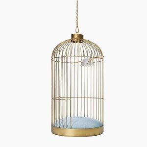 Cage Suspendue par Anouchka Potdevin