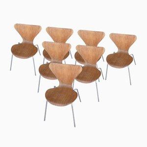Stühle von Arne Jacobsen für Fritz Hansen, 1970, 7er Set
