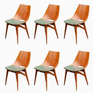 Italienische Esszimmerstühle aus Bugholz & Teak-Schichtholz, 1950er, 6er Set