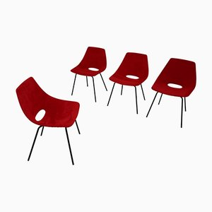 Chaises par Pierre Guariche pour Steiner, France, 1954, Set de 4