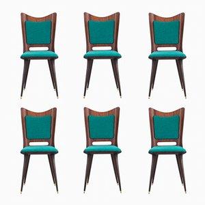 Esszimmerstühle von Mario Asnago, 1950er, 6er Set