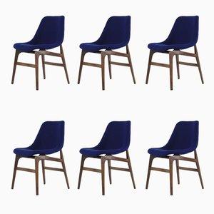 Stühle von Vittorio Dassi, 1960er, 6er Set