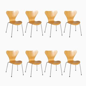 Vintage Model Seven Chairs in Beech with Chromed Steel Legs by Arne Jacobsen for Fritz Hansen, Set of 8