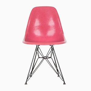 DSR Esszimmerstuhl in Rosa von Charles & Ray Eames für Herman Miller, 1965