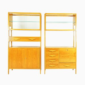 Mid-Century Shelving System by František Jirák for Tatra, 1950s, Set of 2