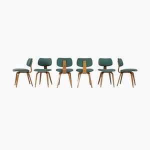 Stühle von Joe Atkinson für Thonet, 1950er, 12er Set