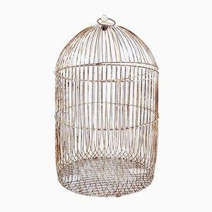 Jaula para pájaros antigua grande con marco de alambre