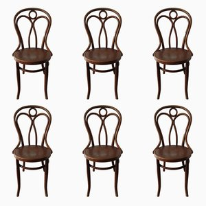 No 36 Dining Chairs from Jacob & Josef Kohn, 1900s, Set of 6
