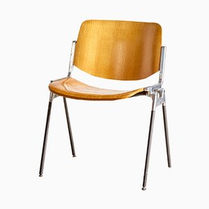 Beech DSC 106 Side Chair by Giancarlo Piretti for Castelli, 1955