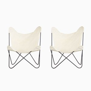 Tripolina Chairs by Gastone Rinaldi for Rima, 1950s, Set of 2