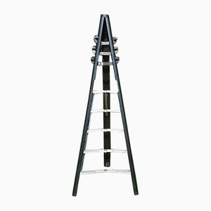 Model Dilemma Ladder Coat Rack by Giancarlo Piretti for Castelli
