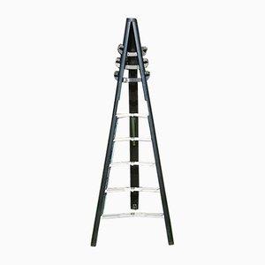 Model Dilemma Ladder Coat Rack by Giancarlo Piretti for Castelli