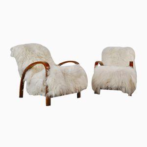 Sessel aus Mahagoni & Schafsfell, 1960er, 2er Set