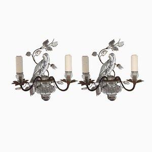 Lampade da parete vintage con pappagallo di Maison Baguès, set di 2
