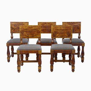Art Deco Esszimmerstühle aus Pinienholz, 5er Set
