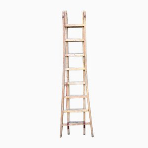Vintage French Blonde Ladder