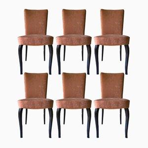 Italienische Esszimmerstühle aus Samt von Vittorio Dassi für Dassi Mobili Moderni, 1950er, 6er Set