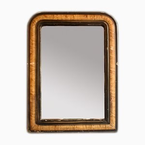 Louis Philippe Mirror with Faux Burl Wood Frame, 1900s